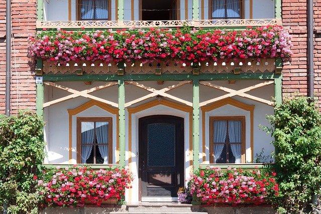 kwiaty na balkon południowy